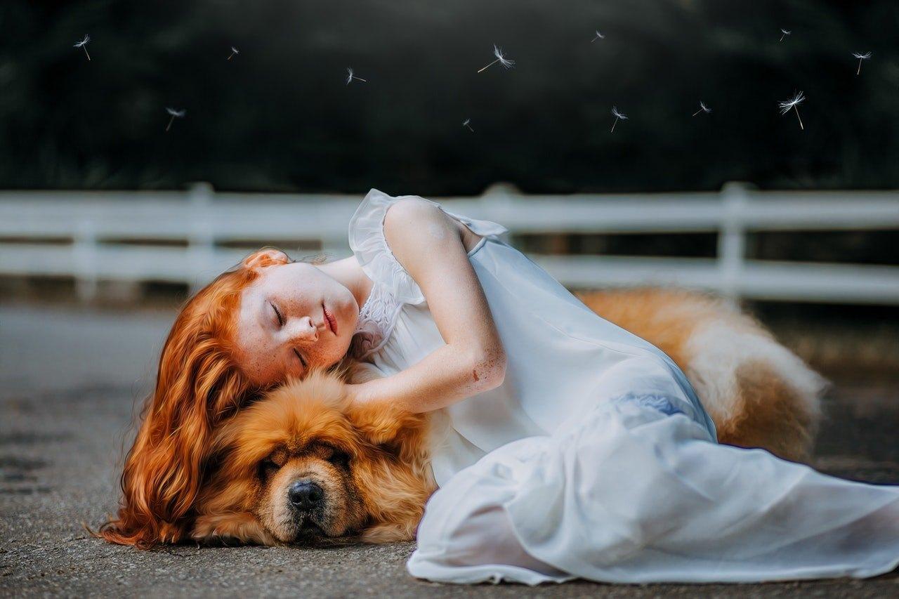 Jak seznámit psa s novorozencem? Může být pes hrozbou pro malé dítě? Jak vychovat dítě se psem? Určitě si přečtěte.