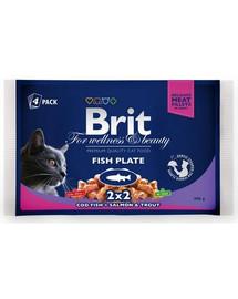 BRIT Cat Pouches Fish Plate  4x100g