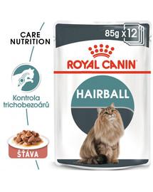 ROYAL CANIN Hairball Care Gravy 85g kapsička pro kočky ve šťávě pro správné vylučování smotků ve šťávě