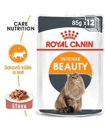 ROYAL CANIN Intense Beauty Gravy 85g x12 kapsička pro kočky ve šťávě