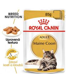 ROYAL CANIN  Maine Coon Loaf 85g x12 kapsička s paštikou pro mainské mývalí kočky