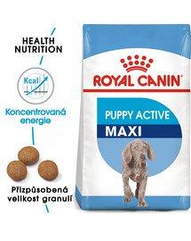 ROYAL CANIN Maxi Puppy Active 15 kg granule pro velká aktivní štěňata