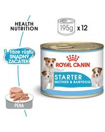 ROYAL CANIN Starter Mousse Mother & Babydog 12 x 195 g mokré krmivo pro feny během těhotenství, laktace a pro štěňata