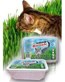 BENEK Zásobník pro rychle rostoucí trávu