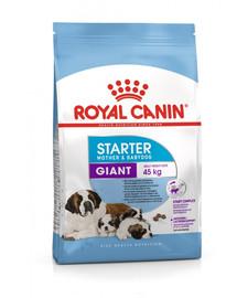 ROYAL CANIN Giant Starter Mother&Babydog 15 kg granule pro březí nebo kojící feny a štěňata