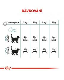 ROYAL CANIN Hairball Care 2kg granule pro kočky pro správné vylučování