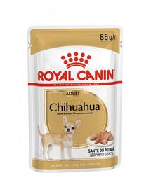ROYAL CANIN Chihuahua Loaf 85g x12 kapsička s paštikou pro čivavu