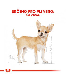 ROYAL CANIN Chihuahua Loaf  85g kapsička s paštikou pro čivavu