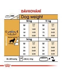 ROYAL CANIN Cocker Adult 12 kg granule pro dospělého kokršpaněla