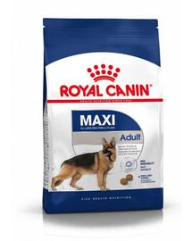ROYAL CANIN Maxi adult 10kg granule pro dospělé velké psy