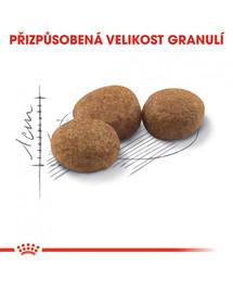 ROYAL CANIN Sterilised 10kg  granule pro kastrované kočky