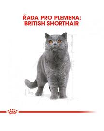 ROYAL CANIN British Shorthair Adult 400g granule pro britské krátkosrsté kočky