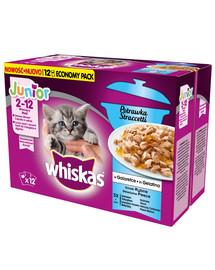 WHISKAS Junior kapsičky 12x85g rybí příchutě - kapsičky pro kočky v želé (s lososem, tuňákem, mořským lososem, bílé ryby)