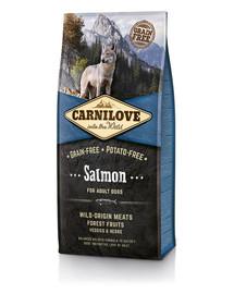 CARNILOVE Dog Salmon Adult 12 kg