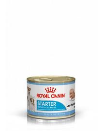 ROYAL CANIN Mini Starter Mousse 195g konzerva pro březí nebo kojící feny a štěňata