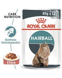ROYAL CANIN Hairball Care Gravy 12 x 85g kapsička pro kočky ve šťávě pro správné vylučování smotků ve šťávě