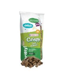 VERSELE-LAGA Crispy Stelivos Rabbits 25 kg granulát pro zakrslé králíky