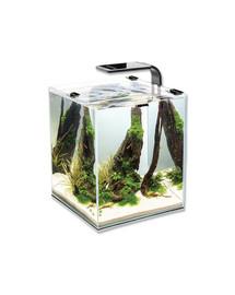 AQUAEL Shrimp Smart akvarijní set černý 25x25x30 cm, 20 l