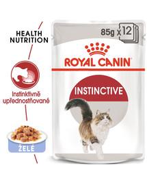 ROYAL CANIN Instinctive Jelly 12x85g kapsičky pro kočku v želé