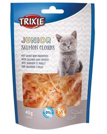 TRIXIE Junior Salmon Cloud 40g pamlsek pro kočky s lososem