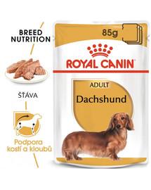 ROYAL CANIN Dachshund Loaf 85g kapsička s paštikou pro jezevčíka