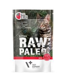 VETEXPERT RAW PALEO Kitten beef 100g hovězí kapsička pro koťata