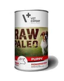 VETEXPERT RAW PALEO Puppy beef 400g hovězí konzerva pro štěňata