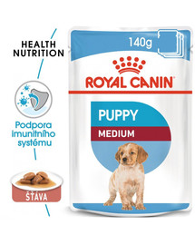 ROYAL CANIN Medium puppy 10x140 g kapsička pro střední štěňata