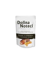 DOLINA NOTECI kompletní krmivo s lososem, mrkví a rýží 100 g pro dospělé psy všech plemen
