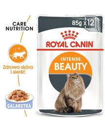 ROYAL CANIN Intense Beauty Jelly 85g x12 kapsička pro kočky v želé