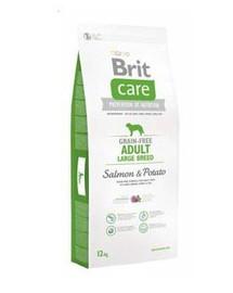 BRIT Care Grain-Free Adult Large Breed salmon & potato 2 x 12 kg