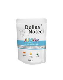 DOLINA NOTECI Premium Junior Bohatá na jehněčí 300g