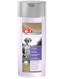 8IN1 šampon protein 250 ml