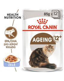 ROYAL CANIN Ageing 12+ v omáčce 12x 85g kapsička pro staré kočky v želé