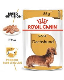 ROYAL CANIN Dachshund Loaf 85g x12 kapsička s paštikou pro jezevčíka