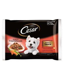 CESAR Selection v omáčce 4x 100g x 13