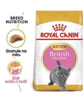 ROYAL CANIN British Shorthair Kitten 2kg granule pro britská krátkosrstá koťata