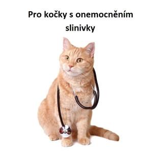 Pro kočky s onemocněním slinivky