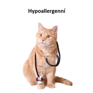 Hypoallergenní krmivo pro kočky