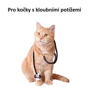 Pro kočky s kloubními potížemi