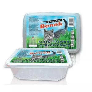 Ledviny a žaludek kočky