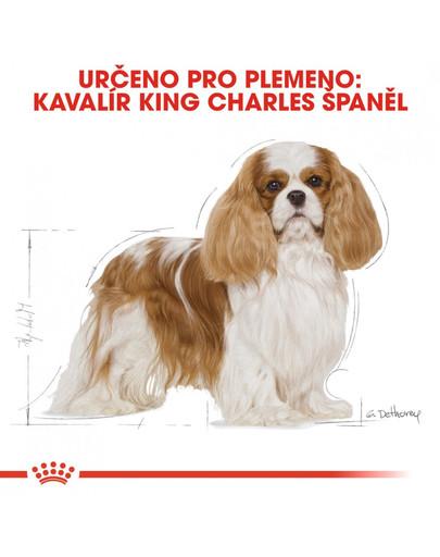 ROYAL CANIN Cavalier King Charles Adult 1.5 kg granule pro dospělého kavalír king charles španěl