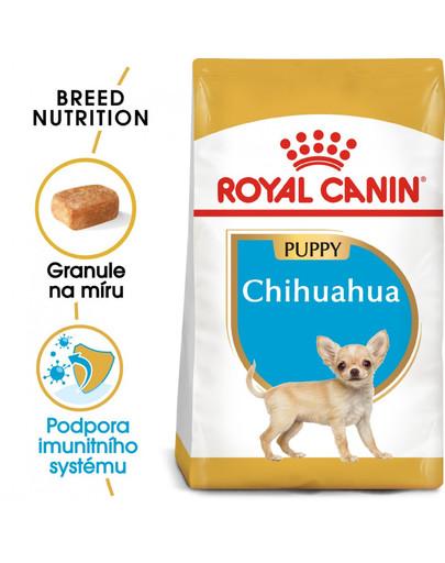 ROYAL CANIN Chihuahua Puppy 1.5 kg granule pro štěně čivavy