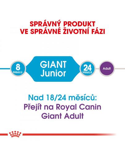 ROYAL CANIN Giant Junior 15 kg granule pro obří štěňata