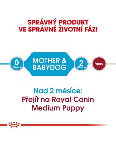 ROYAL CANIN Medium Starter Mother&Babydog 1 kg granule pro březí nebo kojící feny a štěňata