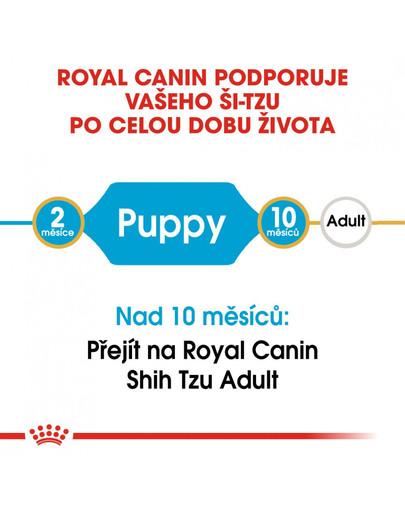 ROYAL CANIN Shih Tzu Puppy  1.5 kg granule pro štěně Shih Tzu