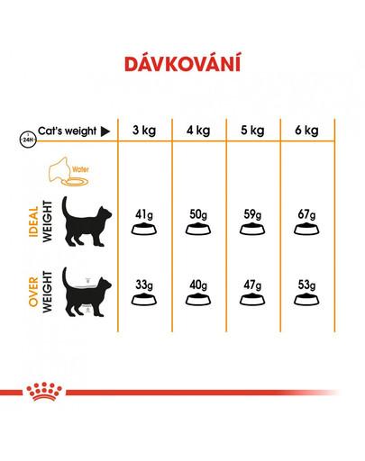 ROYAL CANIN Hair and Skin Care 2kg granule pro kočky pro zdravou srst a kůži