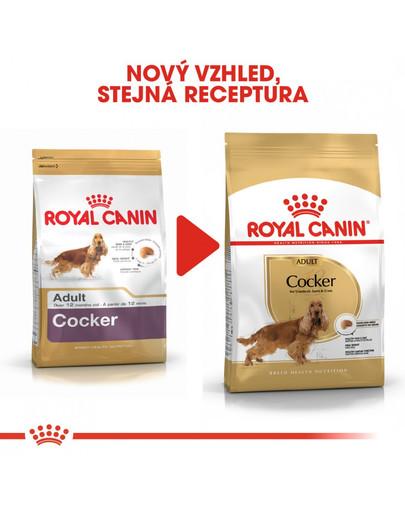 ROYAL CANIN Cocker Adult 3 kg granule pro dospělého kokršpaněla