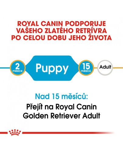 ROYAL CANIN Golden Retriever Puppy 12 kg granule pro štěně zlatého retrívra