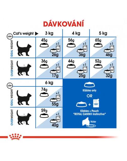 ROYAL CANIN Indoor 400g granule pro kočky žijící uvnitř